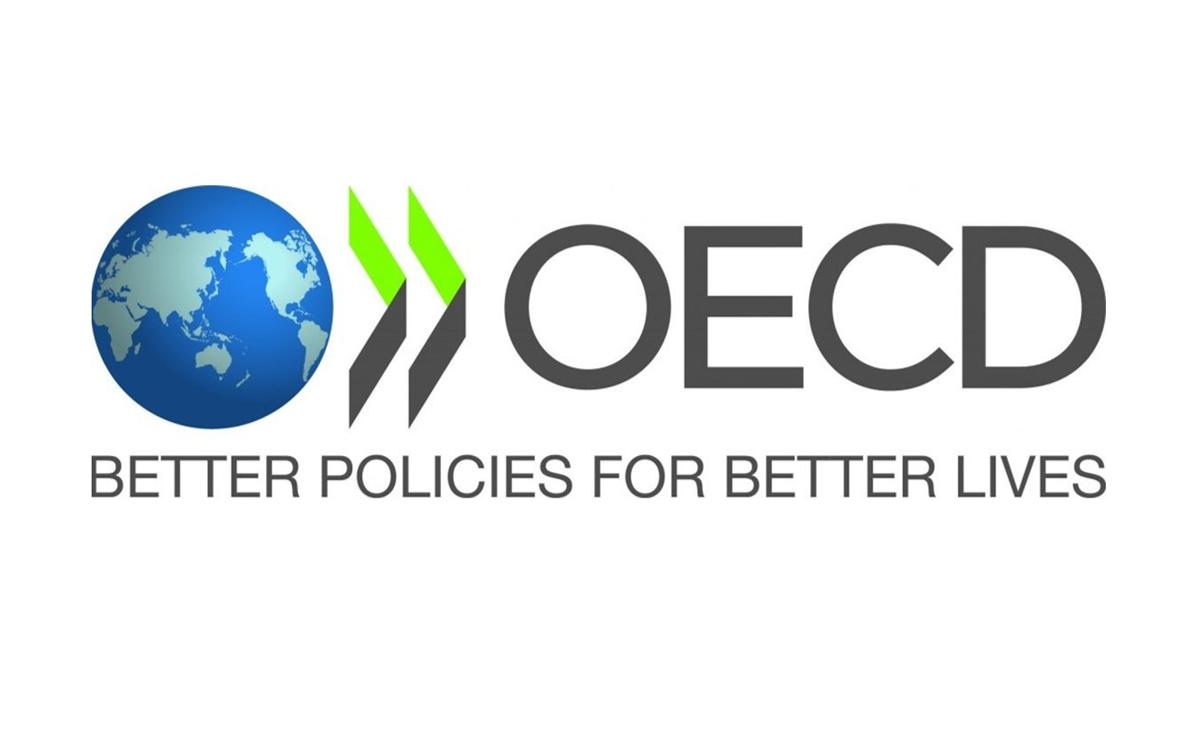 Image result for oecd logo